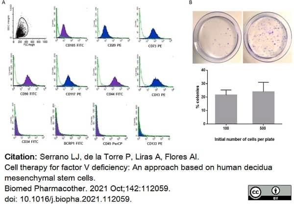 Anti Human CD105 Antibody, clone SN6 thumbnail image 34