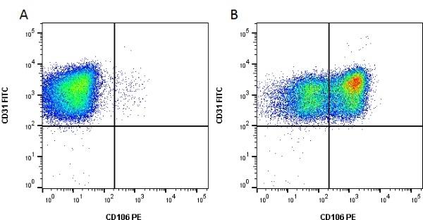 Anti Human CD106 Antibody, clone 1.G11B1 thumbnail image 4