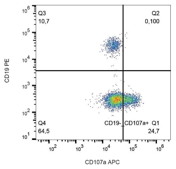 Anti Human CD107a Antibody, clone H4A3 thumbnail image 2