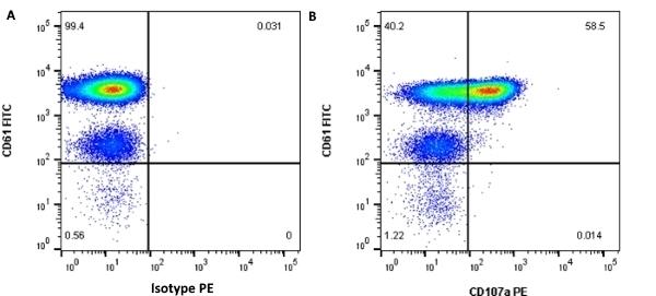 Anti Human CD107a Antibody, clone H4A3 thumbnail image 3