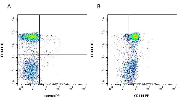 Anti Human CD114 Antibody, clone LMM775 gallery image 1