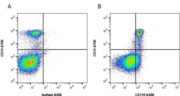 Anti Human CD119 Antibody, clone BB1E2 gallery image 1