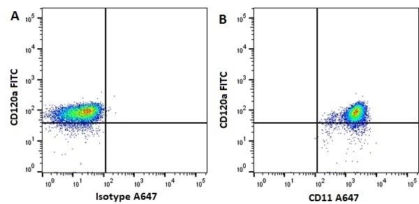 Anti Human CD11b Antibody, clone ICRF44 thumbnail image 1