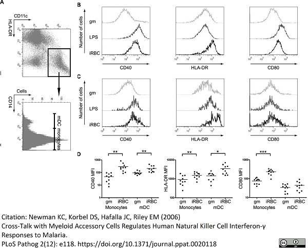Anti Human CD14 Antibody, clone MEM-18 thumbnail image 5