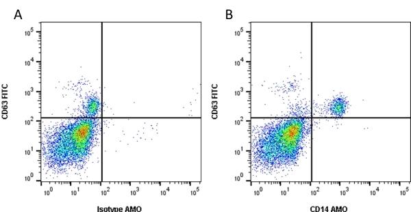 Anti Human CD14 Antibody, clone TÜK4 thumbnail image 1
