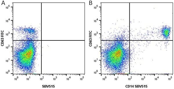 Anti Human CD14 Antibody, clone TÜK4 thumbnail image 17
