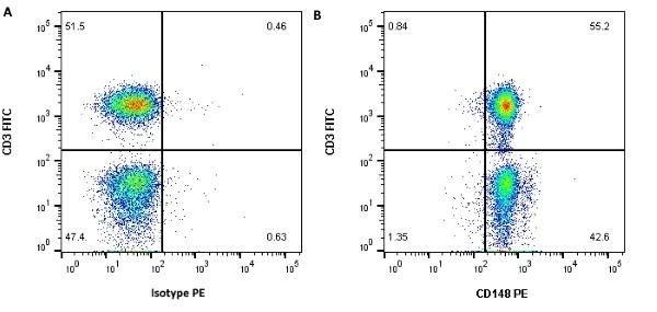 Anti Human CD148 Antibody, clone MEM-CD148/05 thumbnail image 2