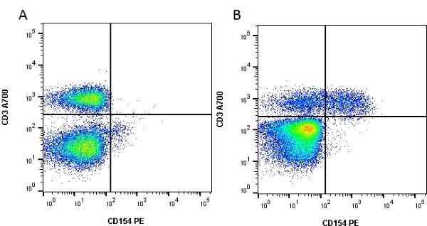 Anti Human CD154 Antibody, clone YMF323.6.2 thumbnail image 1
