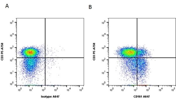 Anti Human CD161 Antibody, clone B199.2 thumbnail image 1