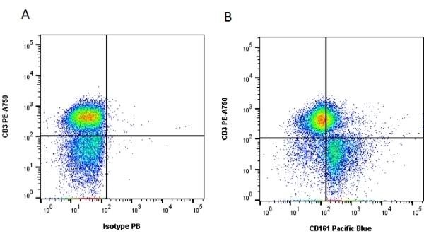 Anti Human CD161 Antibody, clone B199.2 thumbnail image 2