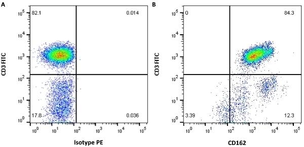 Anti Human CD162 Antibody, clone TC2 thumbnail image 2