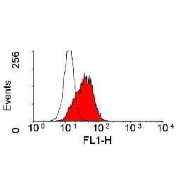 Anti Human CD166 Antibody, clone 3A6 thumbnail image 1