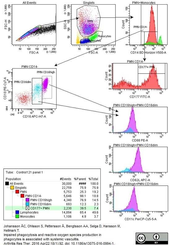 Anti Human CD177 Antibody, clone MEM-166 thumbnail image 2