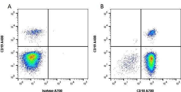 Anti Human CD18 Antibody, clone YFC118.3 thumbnail image 2