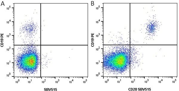 Anti Human CD19 Antibody, clone LT19 thumbnail image 10