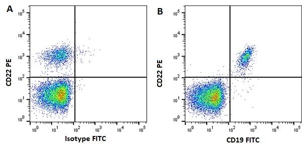 Anti Human CD19 Antibody, clone LT19 thumbnail image 7