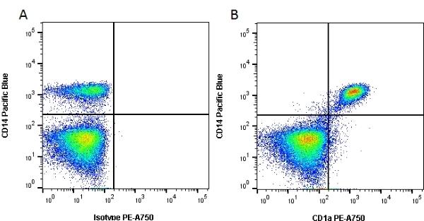 Anti Human CD1a Antibody, clone NA1/34-HLK thumbnail image 2