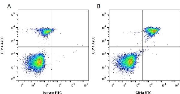 Anti Human CD1a Antibody, clone NA1/34-HLK thumbnail image 3