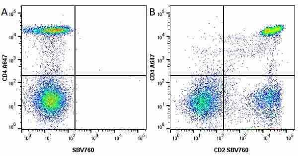 Anti Human CD2 Antibody, clone LT2 thumbnail image 14