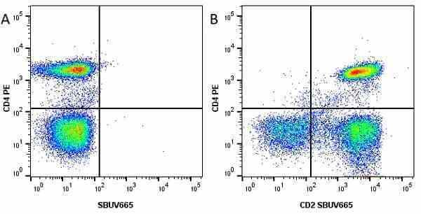 Anti Human CD2 Antibody, clone LT2 thumbnail image 15