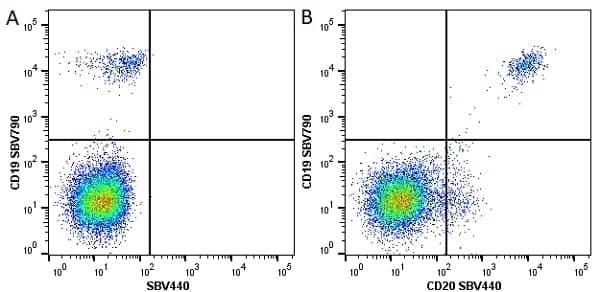 Anti Human CD20 Antibody, clone 2H7 thumbnail image 10