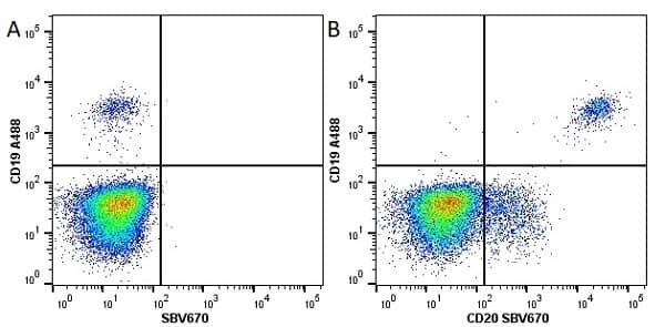 Anti Human CD20 Antibody, clone 2H7 thumbnail image 12