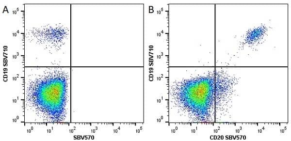 Anti Human CD20 Antibody, clone 2H7 thumbnail image 14