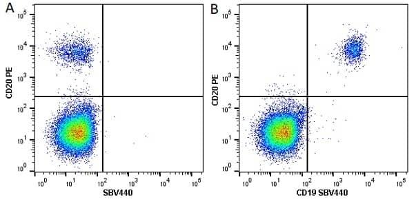 Anti Human CD20 Antibody, clone 2H7 thumbnail image 9
