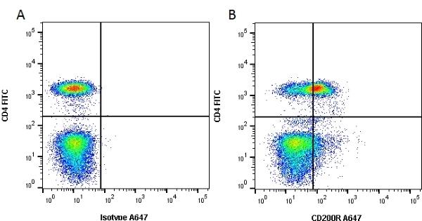 Anti Human CD200R Antibody, clone OX108 thumbnail image 1