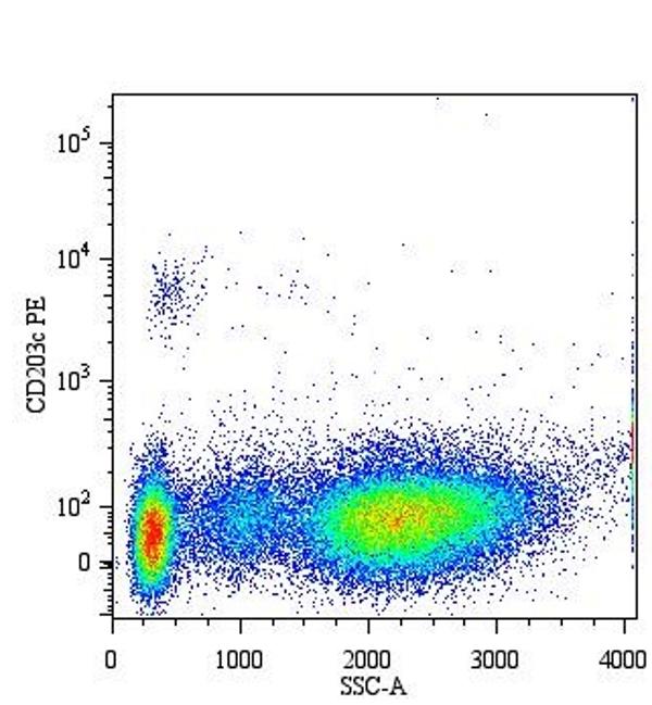 Anti Human CD203c Antibody, clone NP4D6 thumbnail image 1
