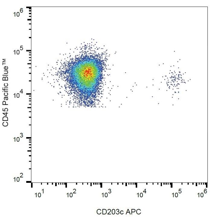 Anti Human CD203c Antibody, clone NP4D6 thumbnail image 3