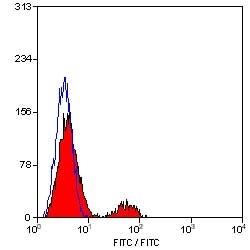 Anti Human CD21 Antibody, clone LB21 thumbnail image 1