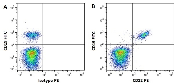 Anti Human CD22 Antibody, clone MEM-01 gallery image 1