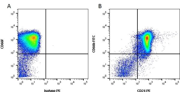 Anti Human CD24 Antibody, clone SN3 thumbnail image 1