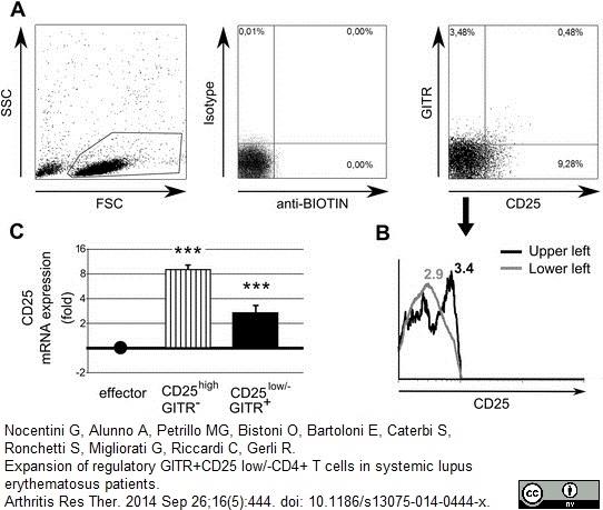 Anti Human CD25 Antibody, clone MEM-181 thumbnail image 3