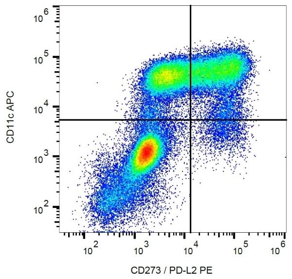 Anti Human CD273 Antibody, clone 24F.10C12 gallery image 1