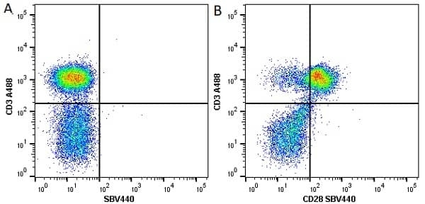 Anti Human CD28 Antibody, clone YTH913.12 thumbnail image 4