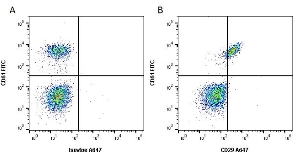 Anti Human CD29 Antibody, clone 12G10 thumbnail image 1