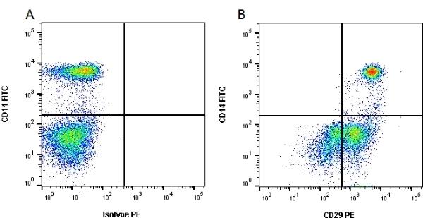 Anti Human CD29 Antibody, clone 12G10 thumbnail image 2
