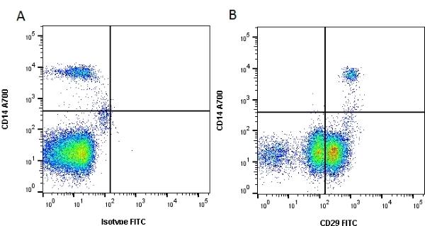 Anti Human CD29 Antibody, clone 4B7R thumbnail image 1