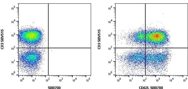 Anti Human CD3 Antibody, clone UCHT1 thumbnail image 41