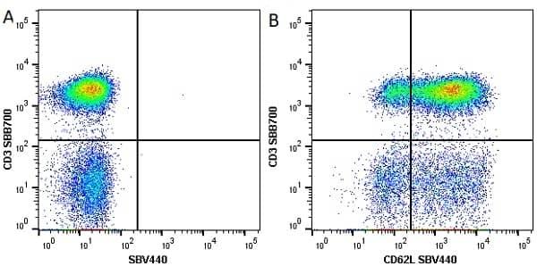 Anti Human CD3 Antibody, clone UCHT1 thumbnail image 53