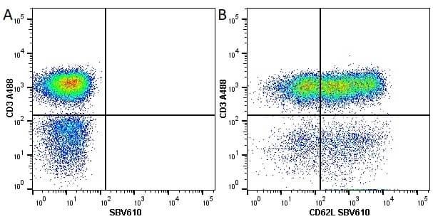 Anti Human CD3 Antibody, clone UCHT1 thumbnail image 57