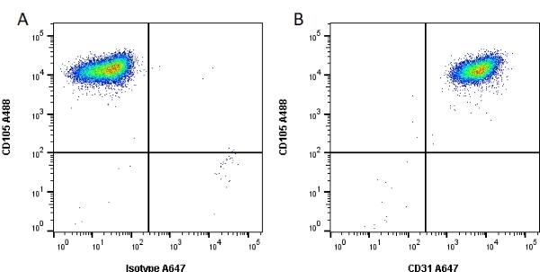 Anti Human CD31 Antibody, clone WM59 thumbnail image 1