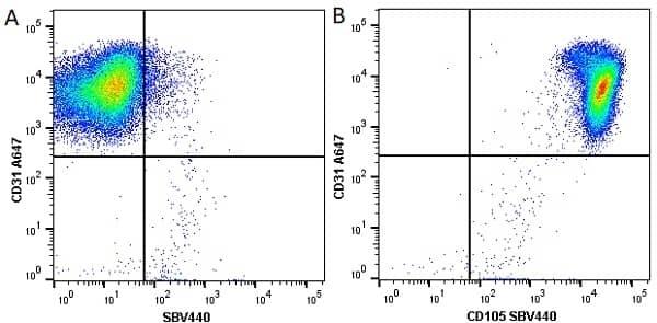 Anti Human CD31 Antibody, clone WM59 thumbnail image 16