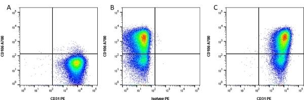 Anti Human CD31 Antibody, clone WM59 thumbnail image 2