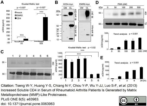 Anti Human CD312 Antibody, clone 2A1 thumbnail image 10