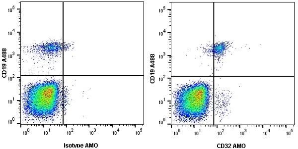 Anti Human CD32 Antibody, clone AT10 thumbnail image 9