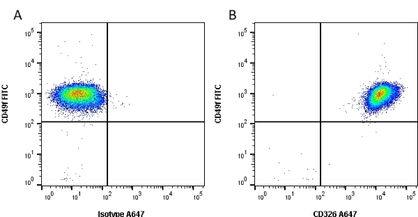 Anti Human CD326 Antibody, clone VU-1D9 thumbnail image 2