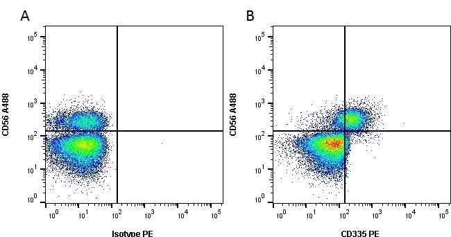 Anti Human CD335 Antibody, clone 9E2 gallery image 1